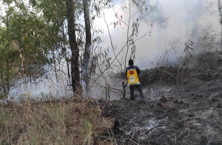 Lereng Gunung Batur Terbakar, Petugas Hadapi Kendala Padamkan Api